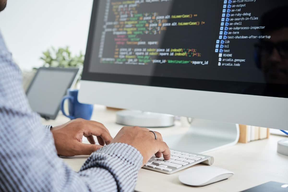 Sviluppo informatico-application programming interface